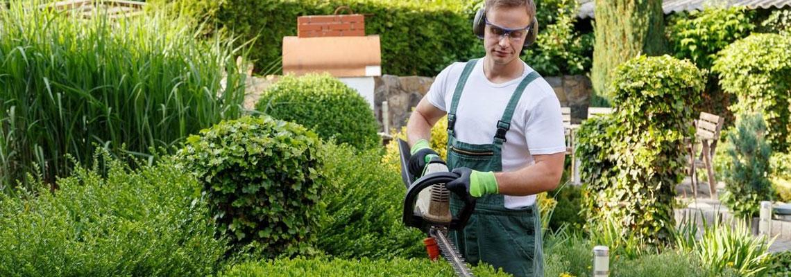 Trouver un paysagiste dans le 77 pour s'occuper de vos espaces verts