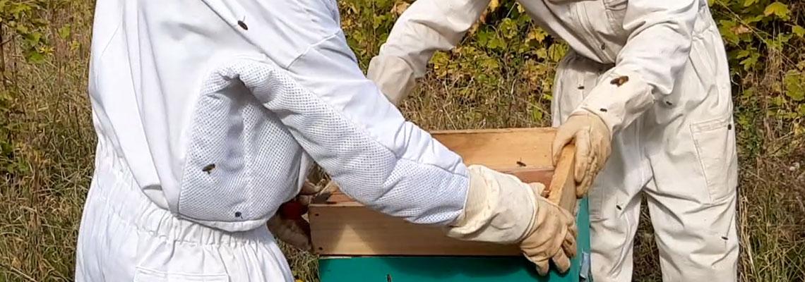 Vêtements d'apiculture